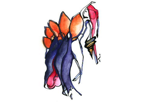 Memopics Artograms Illustrated Poems