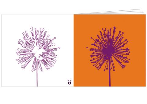 Conscious Creative Broschure