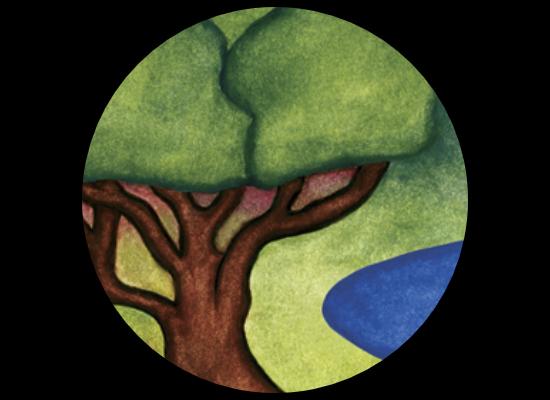Sustain Kauai Logo Design